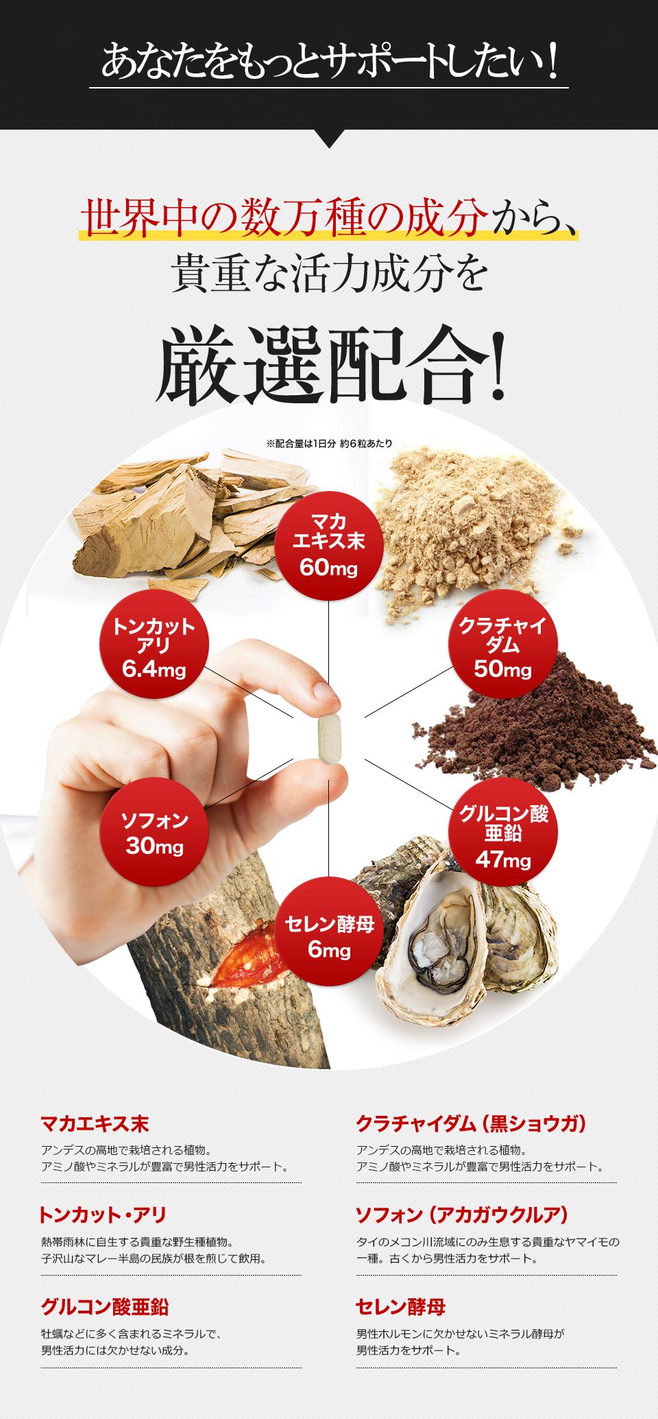 マカエキス末、トンカットアリ、クラチャイダム、ソフォン、セレン酵母、グルコン酸亜鉛などの男性に人気のサプリメントを配合