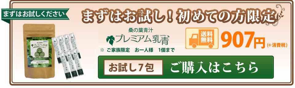リアルメイトのプレミアム乳青 桑の葉青汁 まずはお試し購入907円