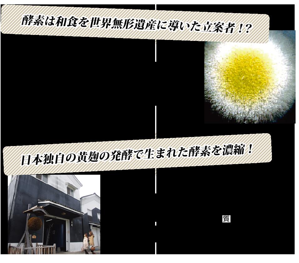 和食には酵素がたっぷり、日本麹から活きた濃縮酵素を配合。酵素の働きにより。栄養素が増加するのです