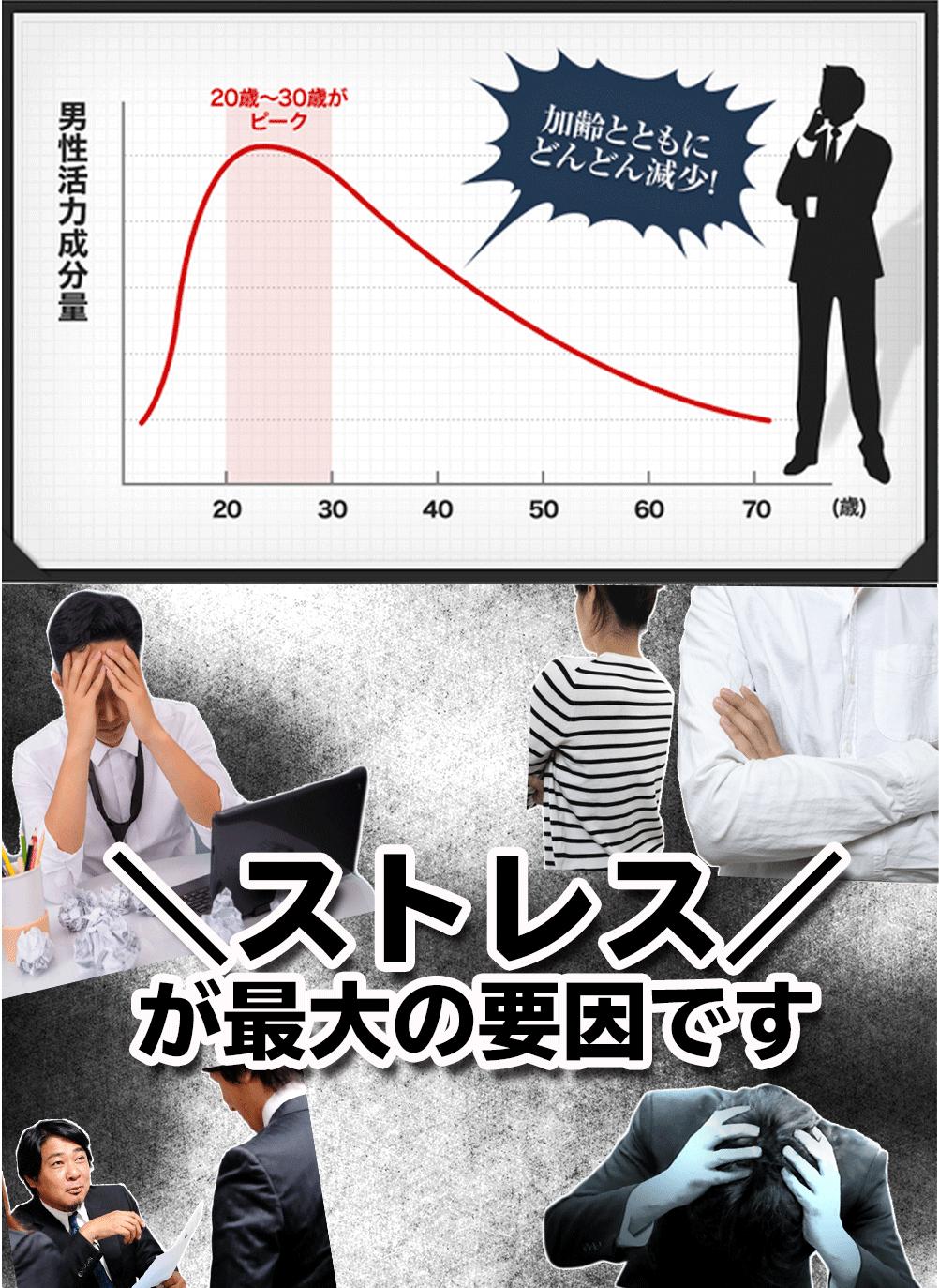男性活力成分が40代から一気に減少していきます