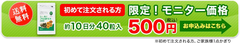 今だけの限定特別キャンペーン価格!500円