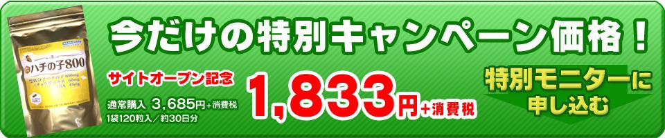 ハチの子800 キャンペーン価格 特別モニターに申し込む