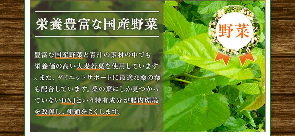 桑の葉、糖ブロック、DNJ 国産青汁、糖の吸収を抑える